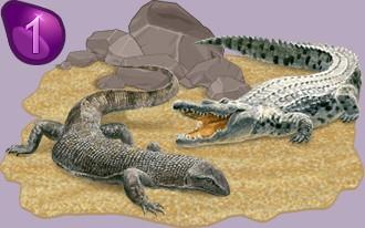 Tabelle der Reptilienzüchter per Anwesenheitstagen